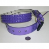 PURPLE STUDS, PURPLE BELTS