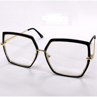 CLEAR LENS METAL FRAMES SUNGLASSES