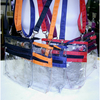CLEAR PLASTIC 2 POUCH SIDE BAG IN COLOR TRIMS